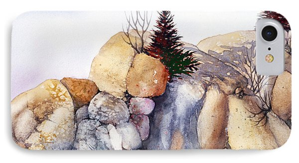 Rock Patterns Turnagain IPhone Case by Teresa Ascone