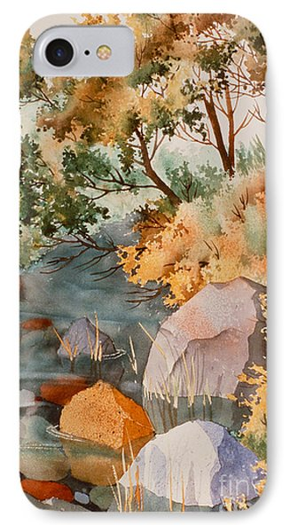 Rock Reflections Phone Case by Teresa Ascone