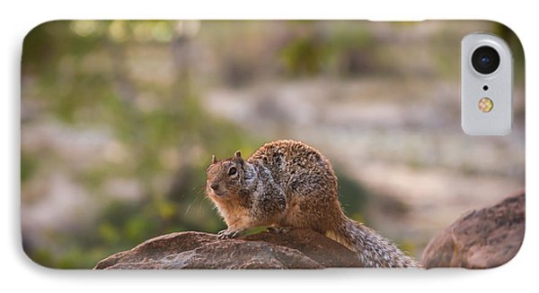 Rock Squirrel In Zion Phone Case by Robert Bales