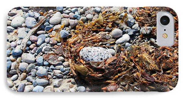 Rock Weed IPhone Case by Shawn MacMeekin