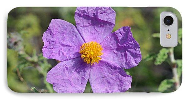 Rockrose Flower Phone Case by George Atsametakis