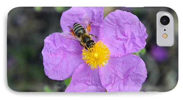 IPhone Case featuring the photograph Rockrose Flower With Bee by George Atsametakis