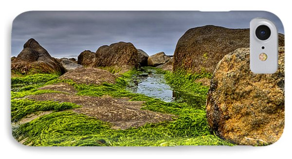 Rocks And Seaweed IPhone Case