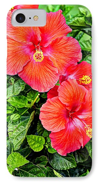 Rocky Hill Hibiscus IPhone Case by Craig T Burgwardt