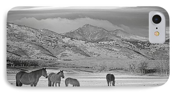 Rocky Mountain Country Morning Bw Phone Case by James BO  Insogna