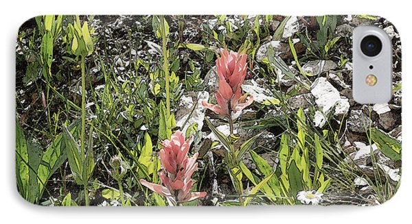 IPhone Case featuring the photograph Rocky Mountain Flora by Ann Johndro-Collins