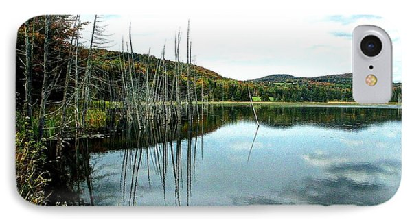 Rodgers Pond IPhone Case by John Nielsen