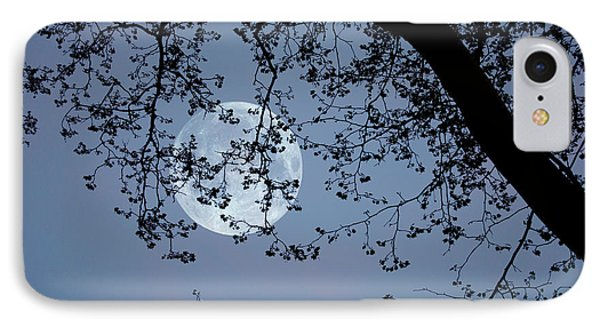 Romantic Moon  IPhone Case by Angel Jesus De la Fuente