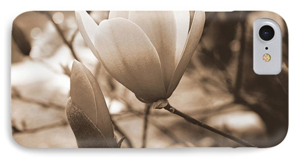 Romantic Vintage Magnolia Phone Case by Kay Novy