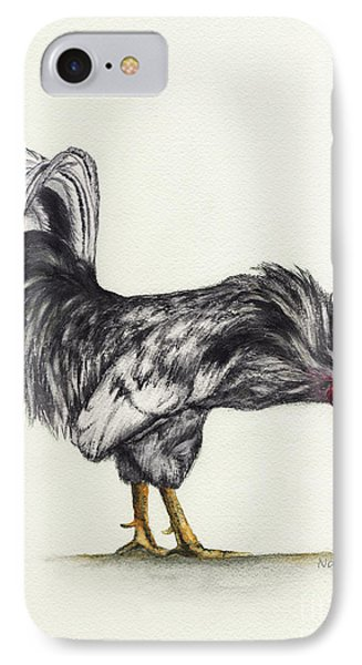 Rooster IPhone Case by Nan Wright