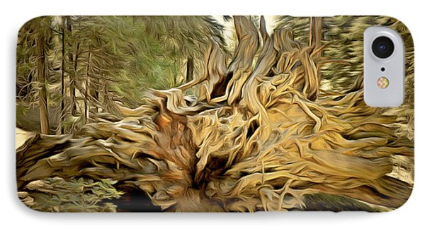 Roots Of A Fallen Giant Sequoia IPhone Case by Barbara Snyder
