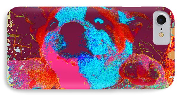 Rosco Belly Up Phone Case by Erica  Darknell