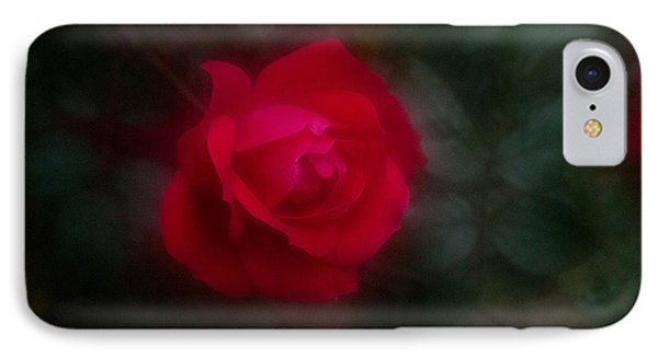 Rose 2 IPhone Case by Travis Burgess