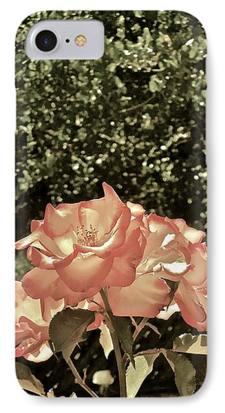 Rose 55 IPhone Case by Pamela Cooper