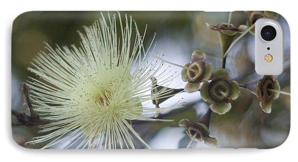 Far North Queensland iPhone 7 Case - Rose Apple Blossom by Kerryn Madsen-Pietsch