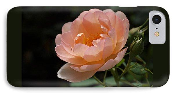 Rose Blush Phone Case by Rona Black