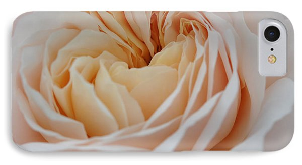 IPhone Case featuring the photograph Rose Blush by Sabine Edrissi