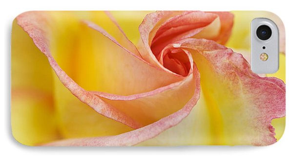 Rose Bud Opening IPhone Case
