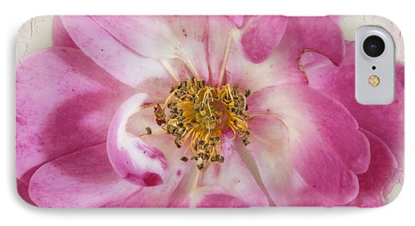 Rose IPhone Case by Elaine Teague