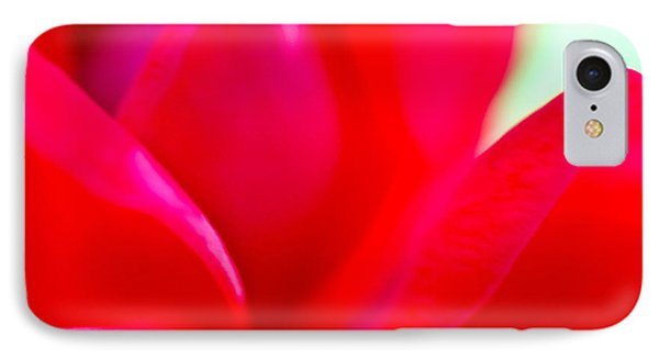 Rose Essence Study 1 IPhone Case by Cathy Dee Janes