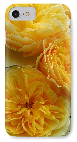 IPhone Case featuring the photograph Rose Graham Thomas by Sabine Edrissi