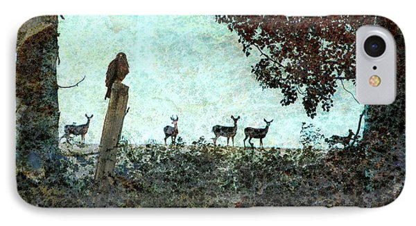 Rose Hill - Autumn IPhone Case by Ed Hall
