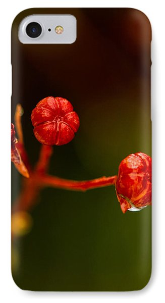 IPhone Case featuring the photograph Rose Hips by Haren Images- Kriss Haren