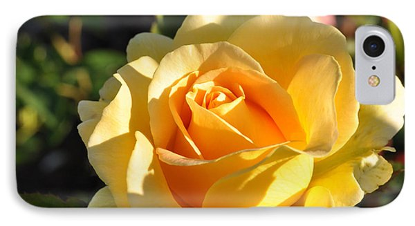 IPhone Case featuring the photograph Rose - Honey Bouquet by Sabine Edrissi