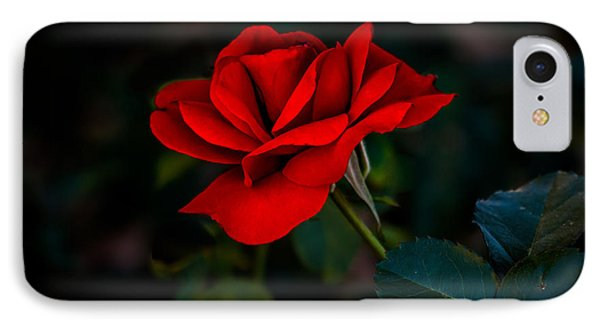 Rose Is A Rose IPhone Case