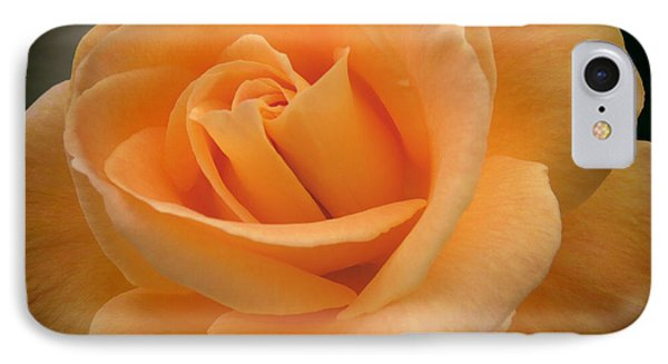 IPhone Case featuring the photograph Rose by Laurel Powell