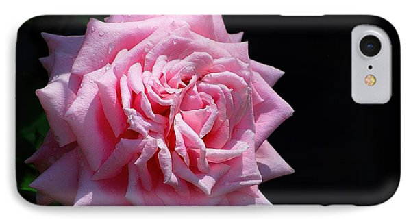 Rose IPhone Case by Ludwig Keck