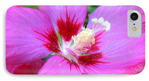 IPhone Case featuring the photograph Rose Of Sharon Hibiscus by Patti Whitten