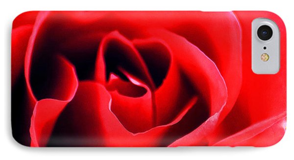 Rose Red IPhone Case by Darren Fisher