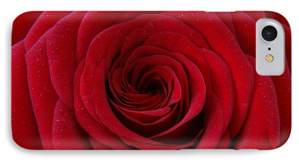IPhone Case featuring the photograph Rose Red by Shawn Marlow
