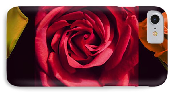 IPhone Case featuring the photograph Rose Triad I by John Hansen
