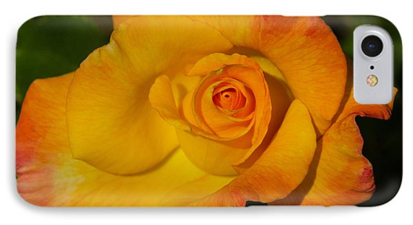 IPhone Case featuring the photograph Rose Yellow Red by Debby Pueschel