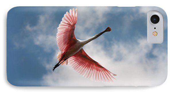 IPhone Case featuring the photograph Roseate Soaring by Paul Rebmann