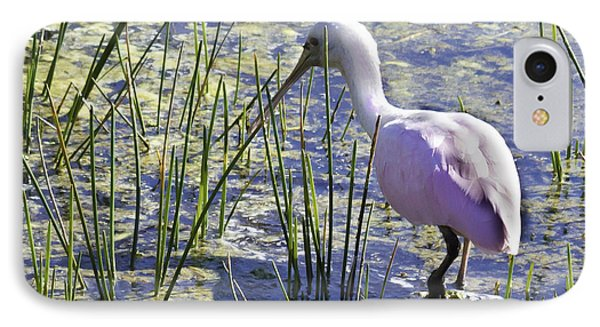 Roseate Spoonbill IIi IPhone Case by Susan Molnar
