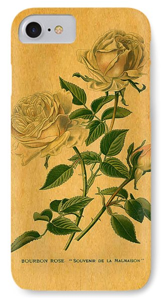 Roses Are Golden Phone Case by Sarah Vernon