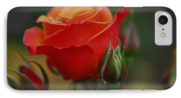 Roses IPhone Case by Jean-Jacques Thebault