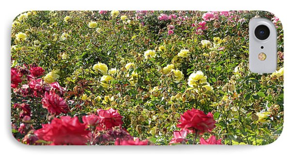 IPhone Case featuring the photograph Roses Roses Roses by Laurel Powell