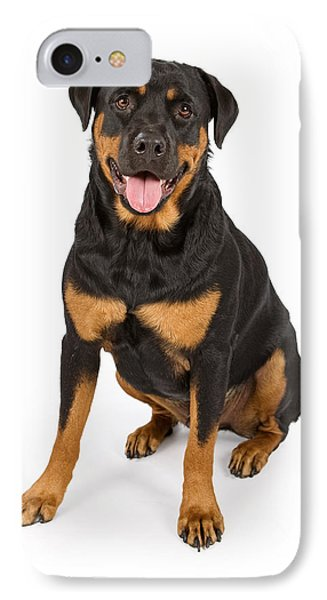 Rottweiler Dog Isolated On White IPhone Case by Susan Schmitz