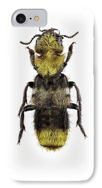 Emu iPhone 7 Case - Rove Beetle by F. Martinez Clavel