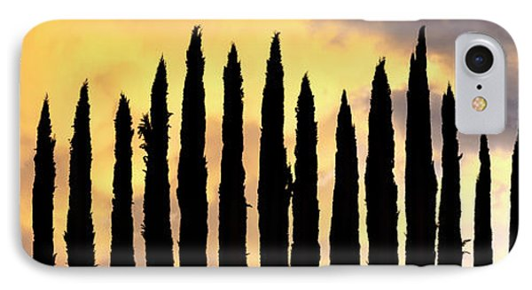 Row Of Cypress Trees Silhouetted IPhone Case