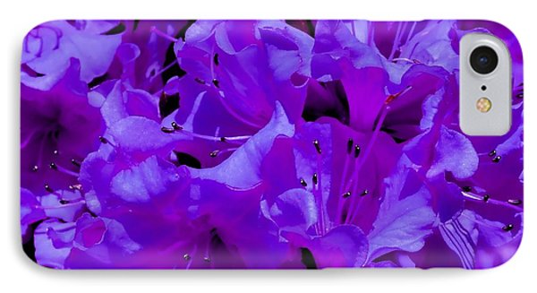 Royal Azaleas IPhone Case