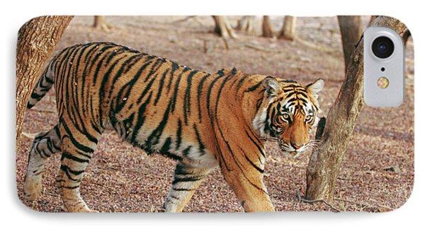 Royal Bengal Tiger Coming IPhone Case