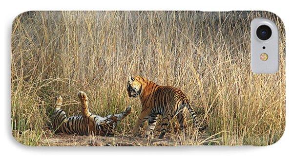Royal Bengal Tigers Playing IPhone Case by Jagdeep Rajput