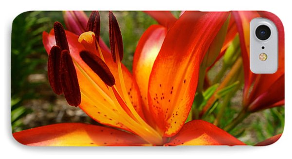 Royal Sunset Lily Phone Case by Jacqueline Athmann