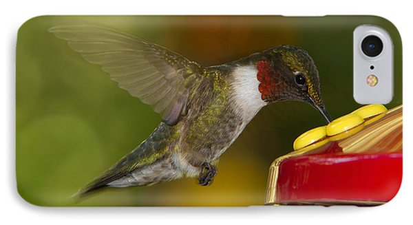 IPhone Case featuring the photograph Ruby-throat Hummer Sipping by Robert L Jackson