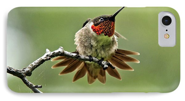 Ruby-throated Velocity Phone Case by Christina Rollo
